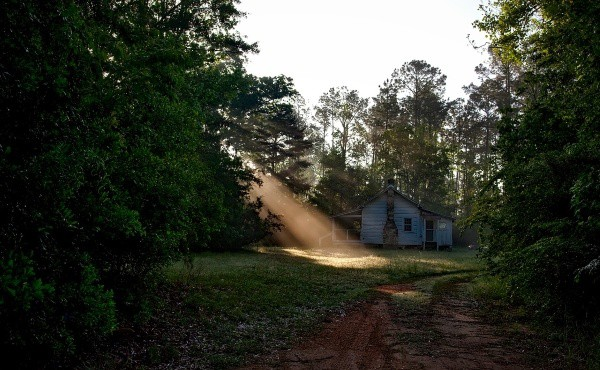 house in woods with sunlight streaming onto frontyard