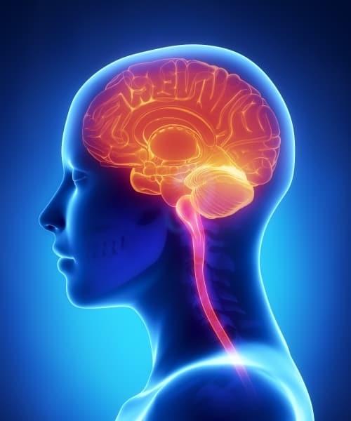 mecfs-is-a-neurological-illness
