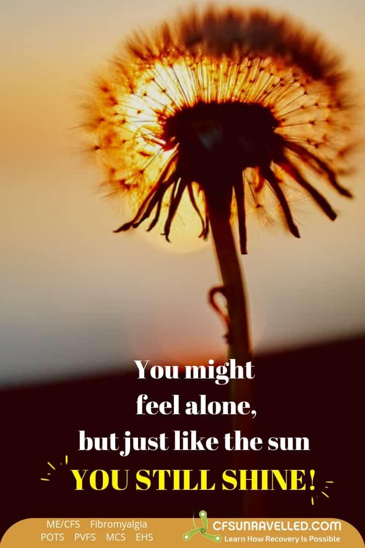 Sun behind dandelion flower