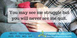 Fibromyalgia Quote ME/CFS Quote POTS Quote