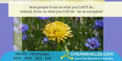 Staying on purpose with MECFS POTS Fibromyalgia