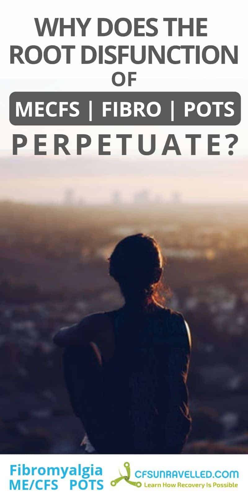person looking onto city at sunset with headline about why MECFS POTS fibromyalgia perpetuates